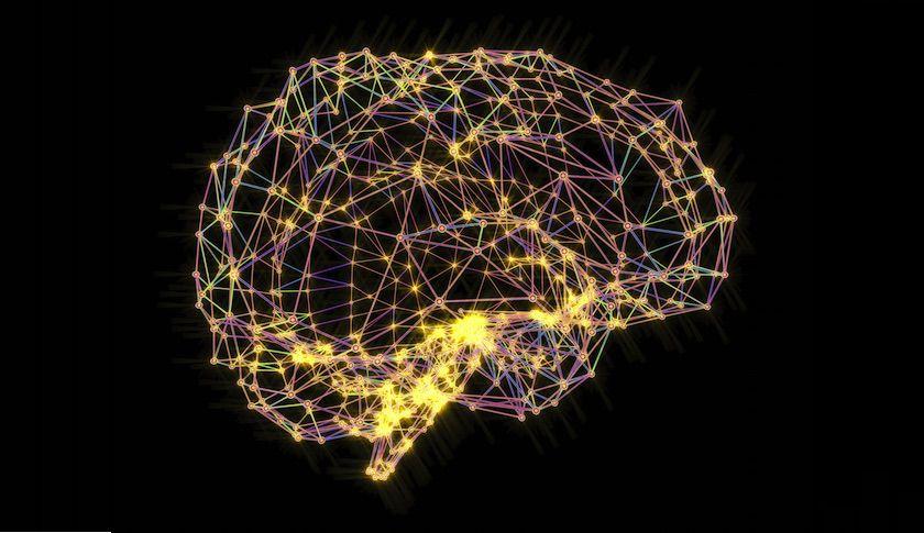 Weetjes over je hersenen